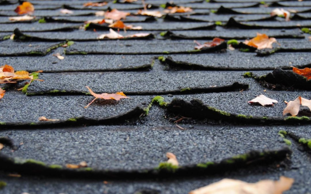 Is it Time for a Roof Replacement?